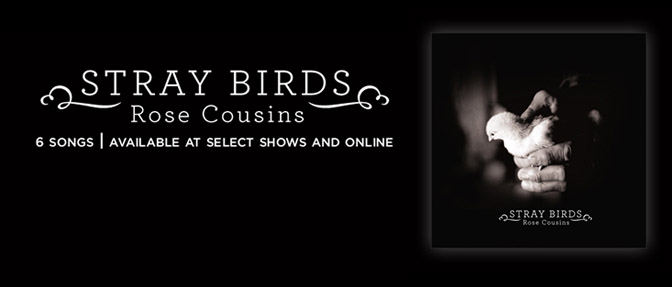 rosecousins-straybirds